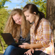 Stock Photo: Internet outdoors