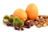 Autumnal Fruits — Stock Photo