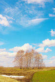 The sky over the field — Stock Photo