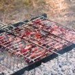 Royalty-Free Stock Photo: Grilled chicken barbeque