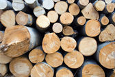 Logs in deforestation area texture — Stock Photo