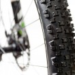mountain bike tire closeup — Stock Photo