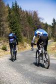 Mountain bikers going uphill — Stock Photo