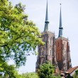 Cathedral Church in Wroclaw, Poland — Stock Photo