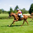 Royalty-Free Stock Photo: Horse racing, motion blur