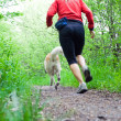 Running in forest with dog — Stok fotoğraf