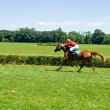 Horse racing, motion blurred — Stock Photo #3437257