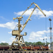 Постер, плакат: Crane at loading dock