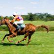 Horse racing - Stock fotografie