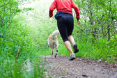 Running in forest with dog — Stock Photo