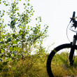 Mountain bike silhouette — Stock Photo