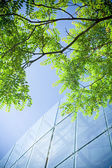 Green business and office building — 图库照片