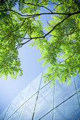 Grüne geschäfts- und bürogebäude — Stockfoto