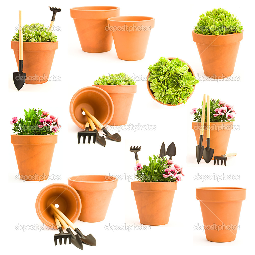 Gardening background. Set of gardening tools and garden flowers — Stock Photo #3401968