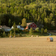 Stock Photo: Farmland landscape