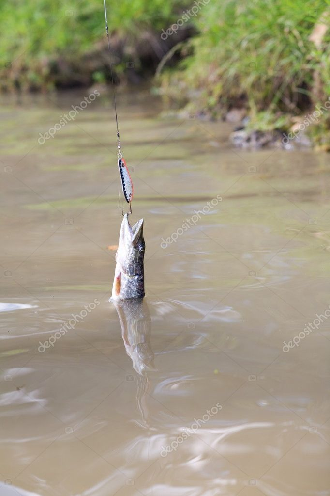 крючки для ловли щуки на кружки