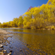 Autumn warm day on river bank — Stock Photo