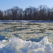 Stock Photo: Freezing river