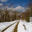 Thawing snow on mountain road — ストック写真