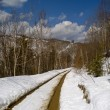 Thawing snow on mountain road — Stockfoto