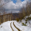 Thawing snow on mountain road — Stock Photo