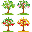 Stock Vector: Apple-tree at different seasons
