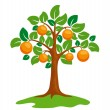 Stock Vector: Orange-tree