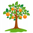 Orange-tree - Stock Vector