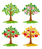 Apple-tree at different seasons — Stock Vector