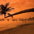 Sunset on tropical beach — Foto Stock