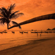 Stock Photo: Sunset on tropical beach