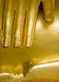 Buddha's hand close up — Stock Photo