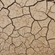 Desert texture — Stock Photo