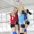 Girls playing volleyball indoor game — Stock Photo #3629539