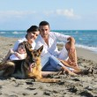 Happy family playing with dog on beach — Stock Photo #4354837