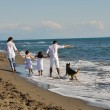 Happy family playing with dog on beach — Stock Photo #4361134