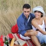 Happy couple enjoying countryside picnic in long grass — Stock Photo #4381916