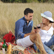 Happy couple enjoying countryside picnic in long grass — Stock Photo #4382005