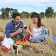 Happy couple enjoying countryside picnic in long grass — Stock Photo #4382322