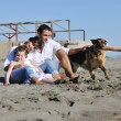 Foto Stock: Happy family playing with dog on beach