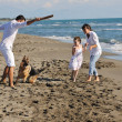 Happy family playing with dog on beach — ストック写真