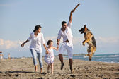 Happy family playing with dog on beach — Stok fotoğraf