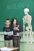 Learn biology in school — Stock Photo
