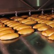 Bread factory production - Foto Stock