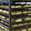 Bread factory production - 图库照片