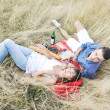 Happy couple enjoying countryside picnic in long grass — Stock Photo