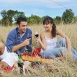 Happy couple enjoying countryside picnic in long grass — Stock Photo #4828108