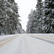 Snowy country road view from below — Stock Photo