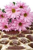 Conjunto de chocolate y crisantemo — Foto de Stock