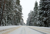 Country road in winter — Stock Photo